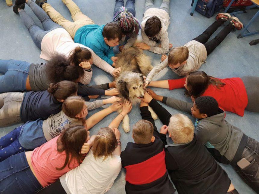 Schüler mit Hund